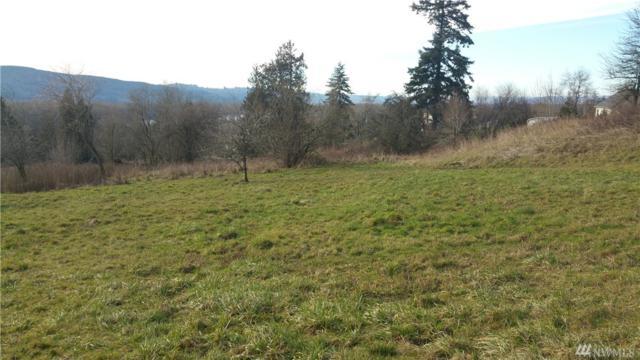 178 Deer Trail Rd, Kelso, WA 98626 (#1419809) :: Canterwood Real Estate Team