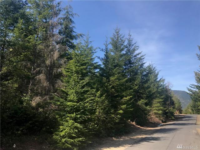 835 N Hamma Ridge Dr, Lilliwaup, WA 98555 (#1420016) :: HergGroup Seattle
