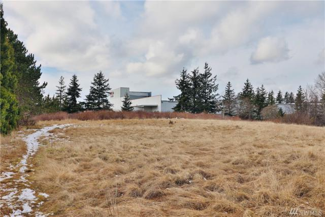 4049 Deemer Rd, Bellingham, WA 98226 (#1420265) :: Mike & Sandi Nelson Real Estate