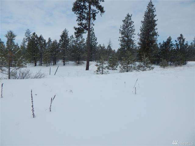0-Lot 12 Prairie Lane N, Creston, WA 99117 (#1420632) :: Mike & Sandi Nelson Real Estate