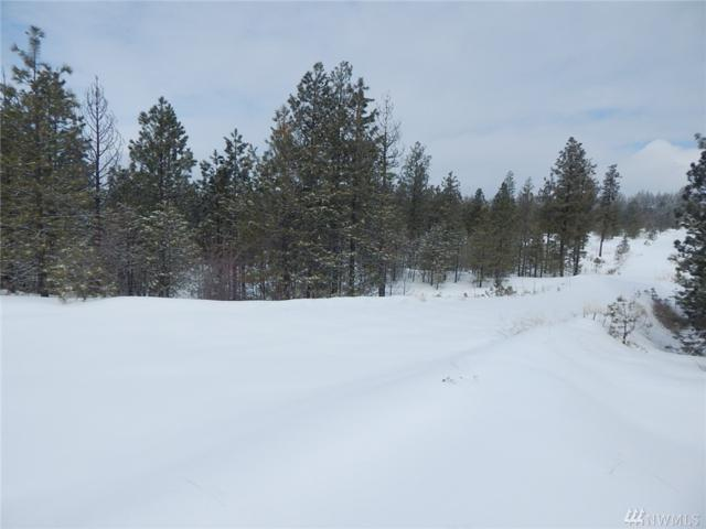 0-Lot 14 Prairie Lane N, Creston, WA 99117 (#1420664) :: Hauer Home Team