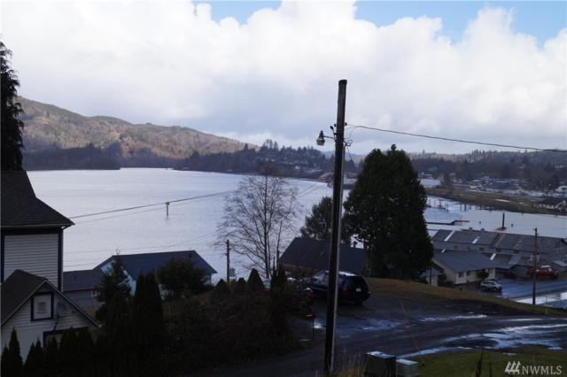 329 Paynes Alley, South Bend, WA 98586 (#1420950) :: Commencement Bay Brokers