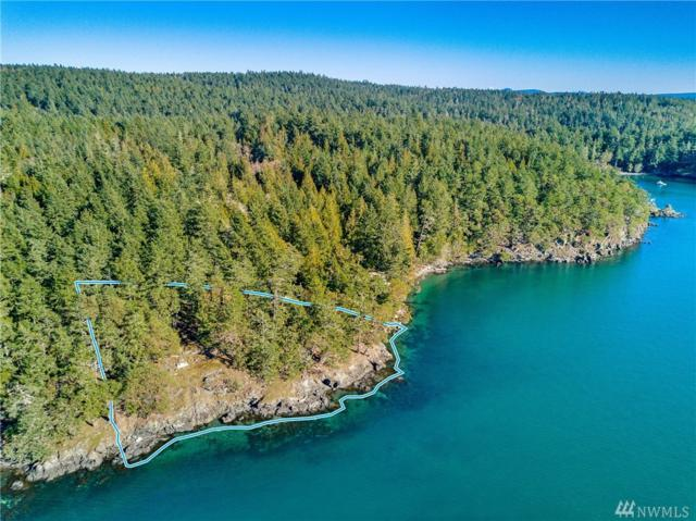 1 Parks Bay Drive, Shaw Island, WA 98286 (#1420975) :: The Shiflett Group