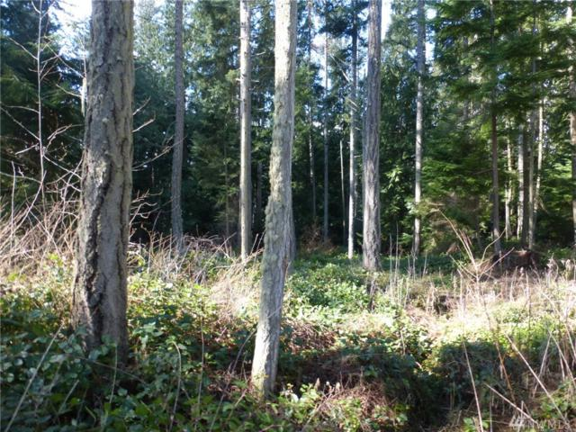 5 Swal'lech Lane, Lopez Island, WA 98261 (#1421082) :: The Robert Ott Group