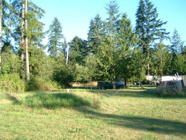 20129 Whitefish Lane SE, Tenino, WA 98598 (#1421421) :: The Robert Ott Group