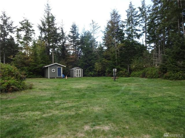 2815 217th St, Ocean Park, WA 98640 (#1421571) :: Crutcher Dennis - My Puget Sound Homes