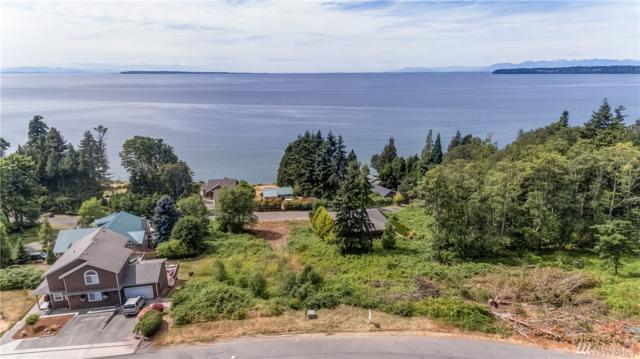 7 Charel Dr, Birch Bay, WA 98230 (#1421932) :: The Robert Ott Group