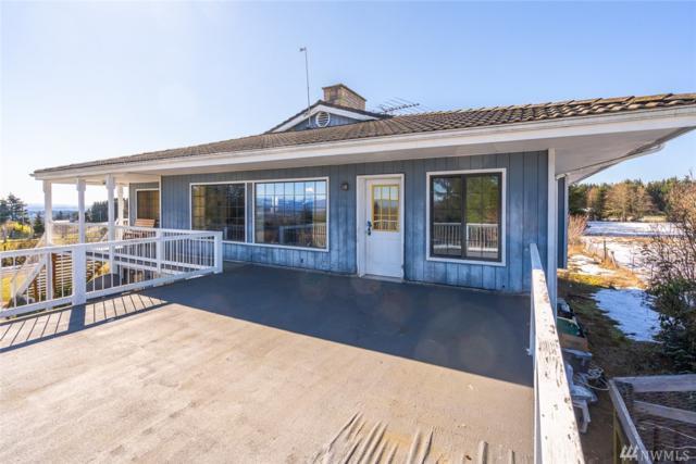431 Burnt Ridge Rd, Onalaska, WA 98570 (#1422025) :: Mike & Sandi Nelson Real Estate