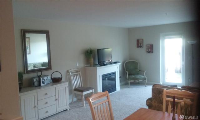 1600 W Ocean Ave #1217, Westport, WA 98595 (#1422062) :: Crutcher Dennis - My Puget Sound Homes