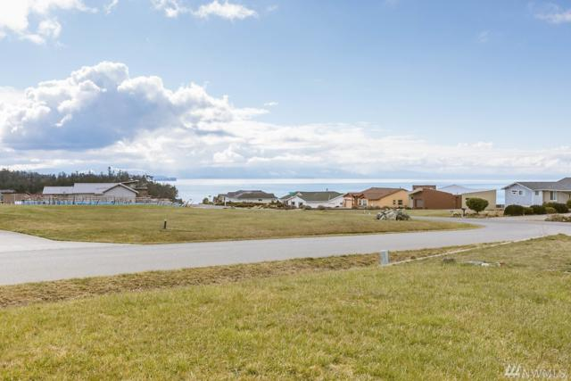 2644 La Mesa Dr, Coupeville, WA 98239 (#1422109) :: Kimberly Gartland Group