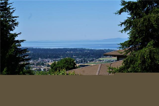 5 Ravens Ridge Rd, Sequim, WA 98382 (#1422225) :: Crutcher Dennis - My Puget Sound Homes