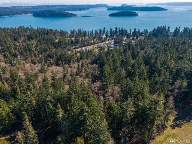0 Carolina Street, Anacortes, WA 98221 (#1422441) :: Ben Kinney Real Estate Team