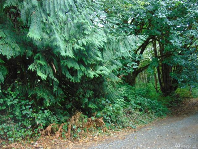 5-Lot Reller Rd, Shelton, WA 98584 (#1422610) :: Commencement Bay Brokers