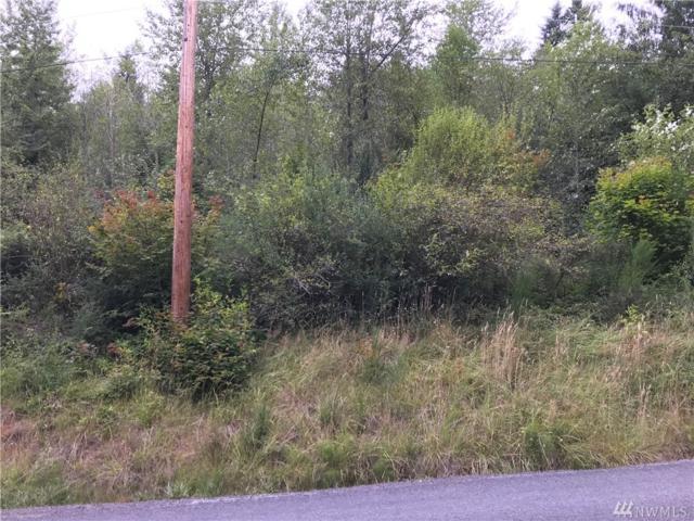 15107 Scott Turner Rd E, Eatonville, WA 98328 (#1422685) :: Crutcher Dennis - My Puget Sound Homes