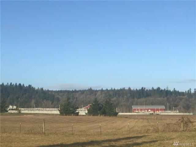 0-0 Wagner Rd, Centralia, WA 98531 (#1422713) :: Canterwood Real Estate Team