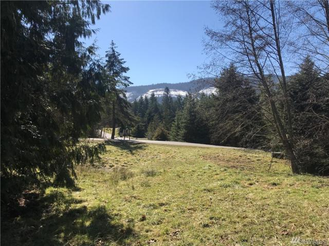 0 Fox Hollow Rd, Sequim, WA 98382 (#1423232) :: Crutcher Dennis - My Puget Sound Homes