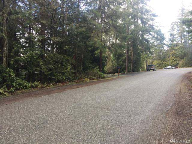 0 Pull And Be Damned Rd, La Conner, WA 98257 (#1423313) :: Better Properties Lacey