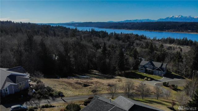 130 E Michael Dr, Belfair, WA 98528 (#1423562) :: Better Homes and Gardens Real Estate McKenzie Group