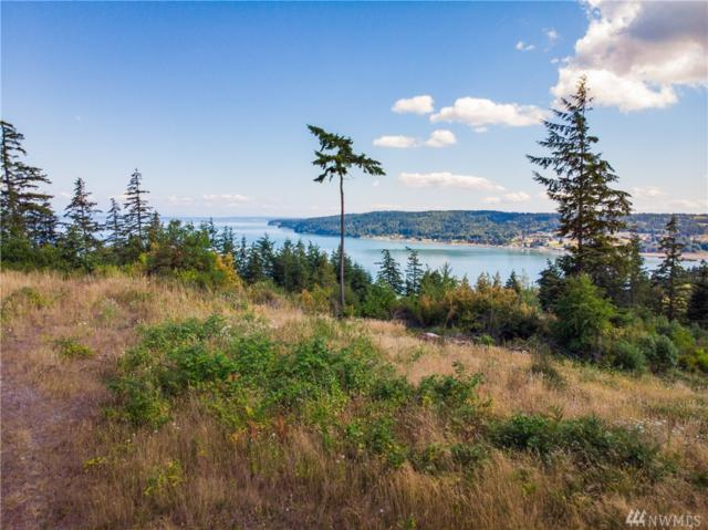 0 Dugualla View Dr, Oak Harbor, WA 98277 (#1423697) :: Better Properties Lacey