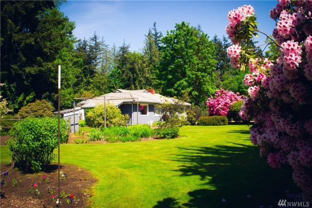 786 Birch Bay Lynden Road, Lynden, WA 98264 (#1424096) :: Canterwood Real Estate Team