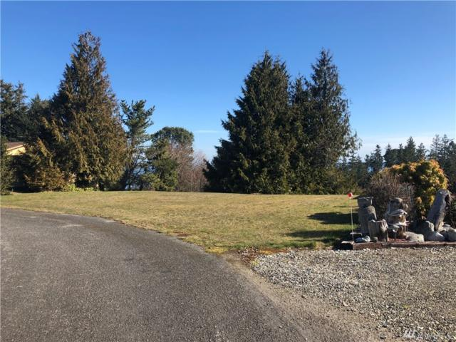 9999 Lot 22 Huckleberry Cr, Sequim, WA 98382 (#1424126) :: Real Estate Solutions Group