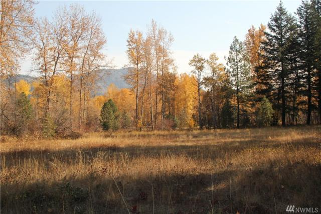 18255 Highway 20, Mazama, WA 98833 (MLS #1424255) :: Nick McLean Real Estate Group