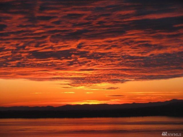 339 High Haro Rd, San Juan Island, WA 98250 (#1424522) :: Crutcher Dennis - My Puget Sound Homes