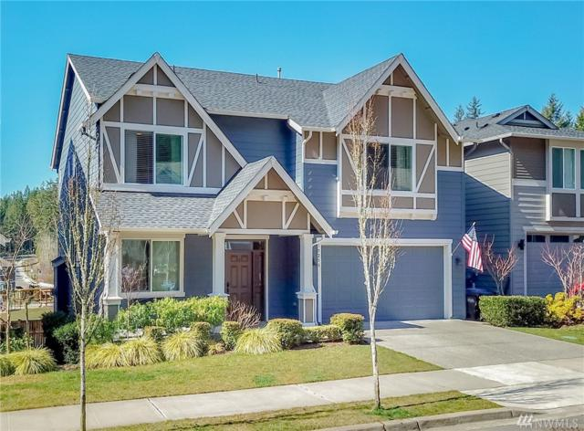 10250 Sentinel Lp, Gig Harbor, WA 98332 (#1424877) :: Canterwood Real Estate Team