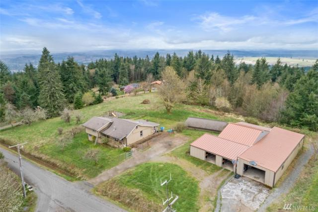 3728 Blumauer Rd SE, Tenino, WA 98589 (#1424979) :: Northern Key Team