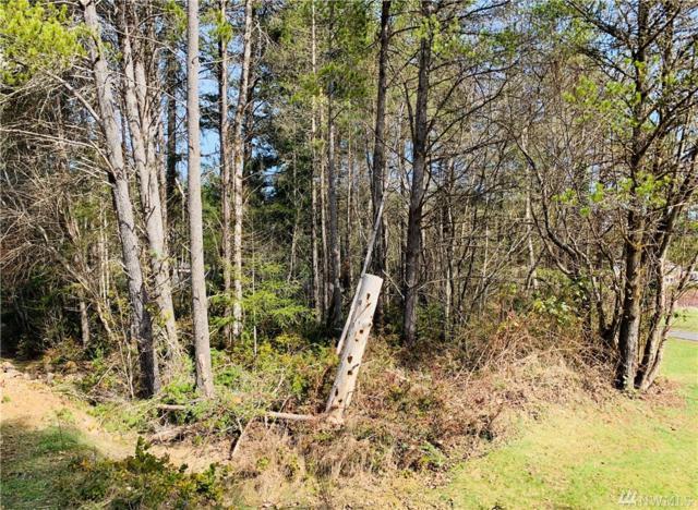 111 E Road Of Tralee, Shelton, WA 98584 (#1425018) :: Crutcher Dennis - My Puget Sound Homes
