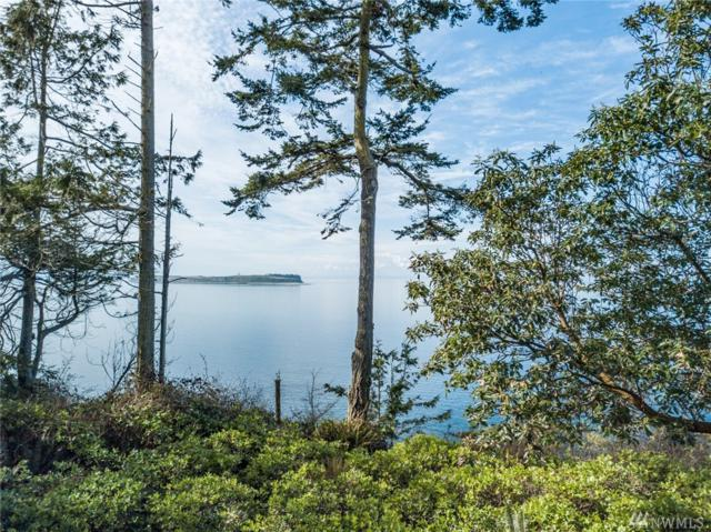 780 Mcminn Rd, Port Townsend, WA 98368 (#1425083) :: Northern Key Team
