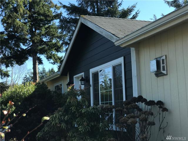 20205 Crane Place, Ocean Park, WA 98640 (#1425327) :: Crutcher Dennis - My Puget Sound Homes
