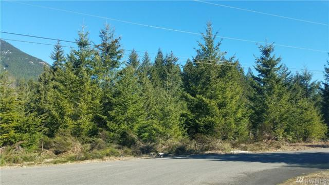 36-lot36/37 Jack Fir Ct, Packwood, WA 98361 (#1425354) :: Hauer Home Team