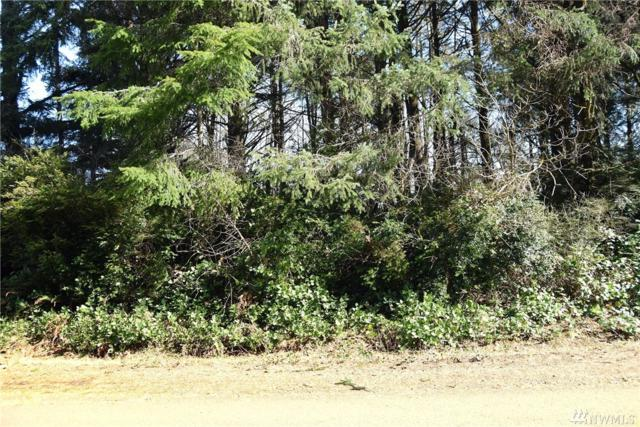 798 Chenois Ave NE, Ocean Shores, WA 98569 (#1425389) :: Kimberly Gartland Group