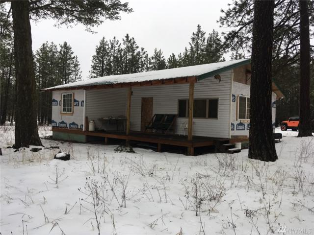 3906 Taylor Ranch Way, Loon Lake, WA 99148 (#1425573) :: Hauer Home Team