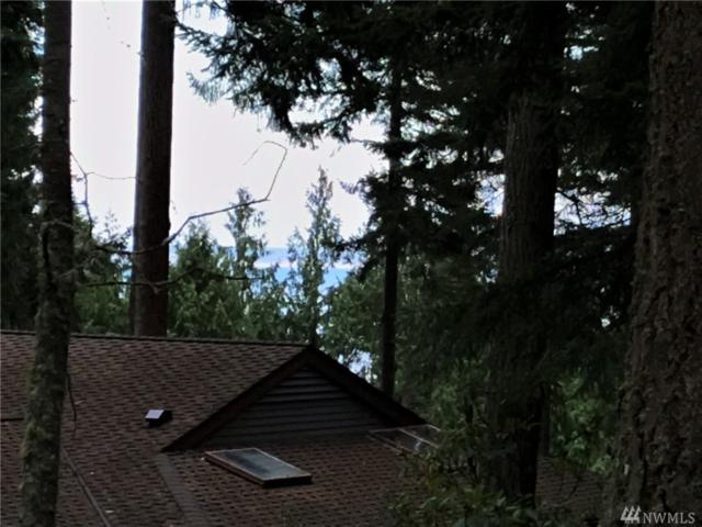241-Lot Belvedere Dr, Port Townsend, WA 98368 (#1425726) :: The Royston Team