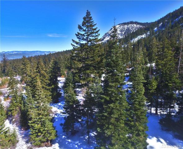 1570 Rocky Mountain Wy, Cle Elum, WA 98922 (MLS #1425913) :: Nick McLean Real Estate Group