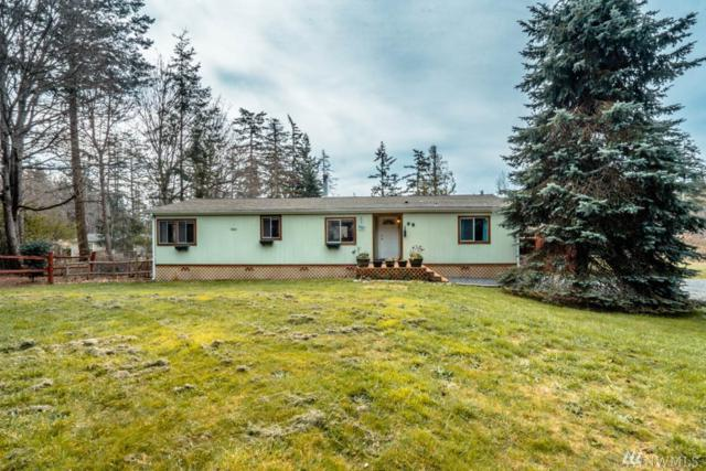 98 E Dry Lake Rd, Camano Island, WA 98282 (#1426154) :: Hauer Home Team