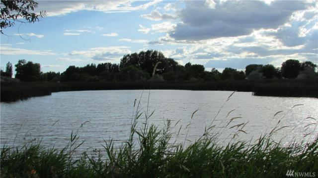 8002 Scott Rd NE, Moses Lake, WA 98837 (MLS #1426266) :: Nick McLean Real Estate Group
