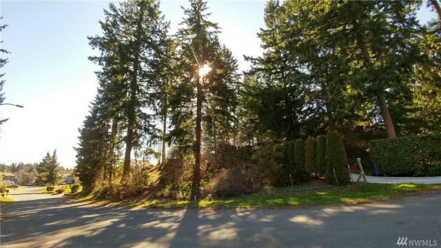 0-XXXX 181st Ave E, Bonney Lake, WA 98391 (#1426371) :: Mike & Sandi Nelson Real Estate