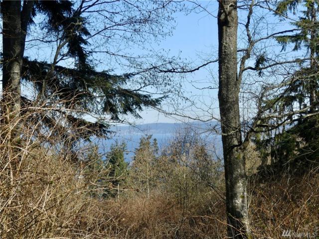 4559 Evenstar Lane, Freeland, WA 98249 (#1426397) :: Crutcher Dennis - My Puget Sound Homes