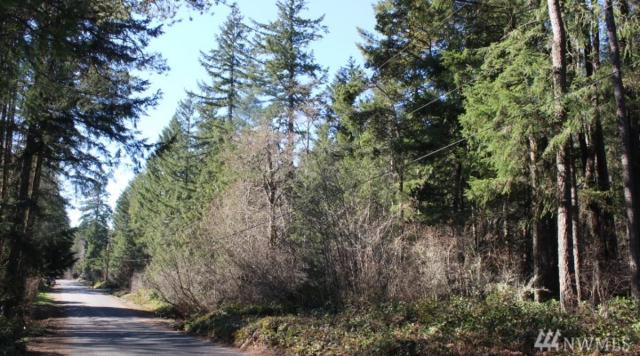 3355 SW Christmas Tree Lane, Port Orchard, WA 98367 (#1426449) :: Ben Kinney Real Estate Team