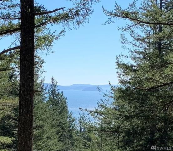 15 Tomihi Dr, Orcas Island, WA 98245 (#1426535) :: Mike & Sandi Nelson Real Estate