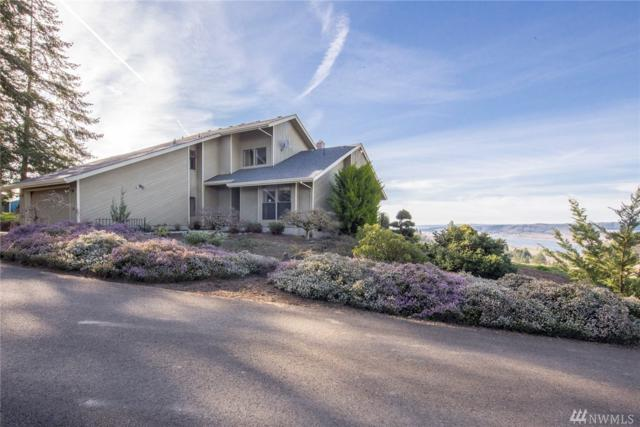 298 Large Rd, Kalama, WA 98625 (#1426660) :: Crutcher Dennis - My Puget Sound Homes
