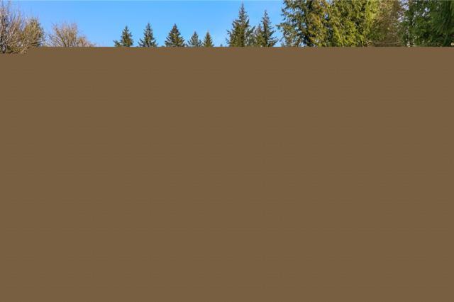 12442 Waddell Creek Rd SW, Olympia, WA 98512 (#1426732) :: Keller Williams - Shook Home Group