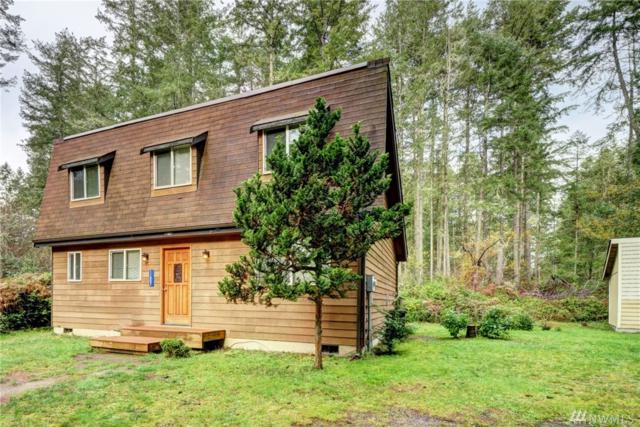 11807 Dogwood Place, Anderson Island, WA 98303 (#1426807) :: Real Estate Solutions Group