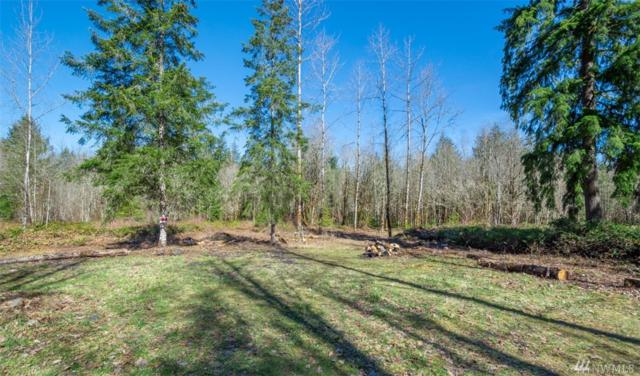 227 Palmer Rd, Napavine, WA 98565 (#1426811) :: Northern Key Team
