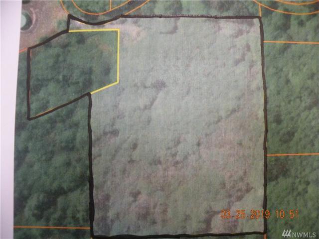 2921 Oldani Rd, Raymond, WA 98577 (#1427026) :: Crutcher Dennis - My Puget Sound Homes