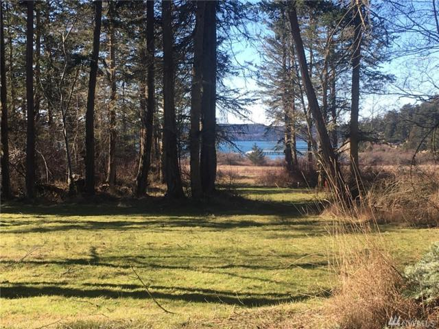 4-xxx Centerview Dr, Decatur Island, WA 98221 (#1427039) :: Homes on the Sound