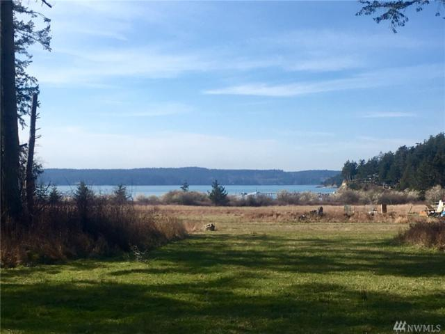 25-xxx Centerview Dr, Decatur Island, WA 98221 (#1427070) :: Mike & Sandi Nelson Real Estate